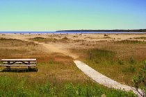 Singing Sands beach on Lake Huron is a five minute drive from the cottage. This is a wonderful place to spend time.