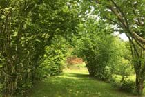 The hazel walk in the rear garden at Boudet