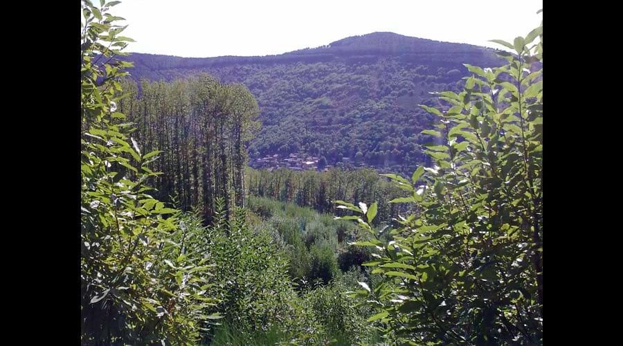Hills around Montolieu