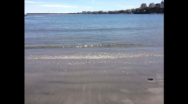 Shimmering sea on Chapel beach, Port St Mary