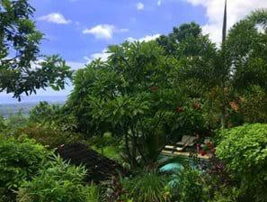 Tuin en zwembad van bovenste deel tuin gezien