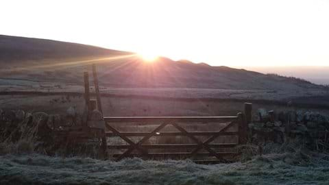 A wintry morning from the top of our Field