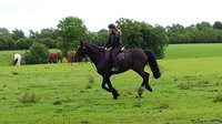 What a great day out horseriding !