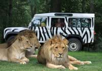 Longleat safari park is a great day out for all ages