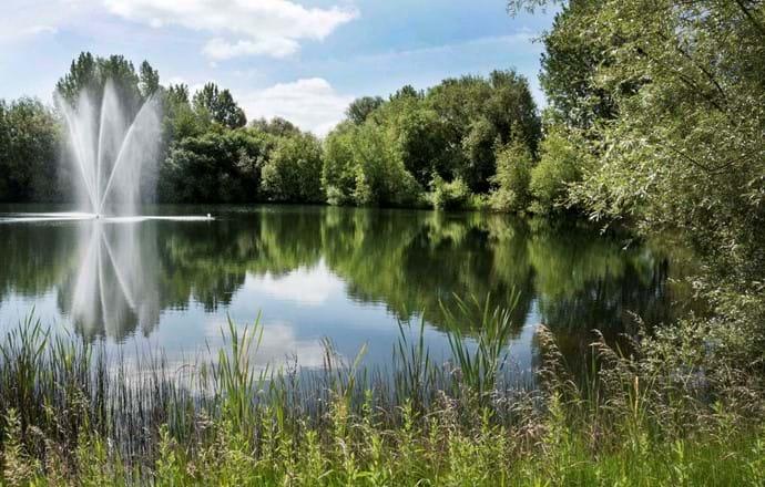 A walk round Isis Lake