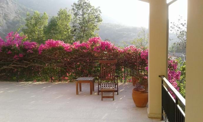 A quiet sitting area under the bourgonvillea