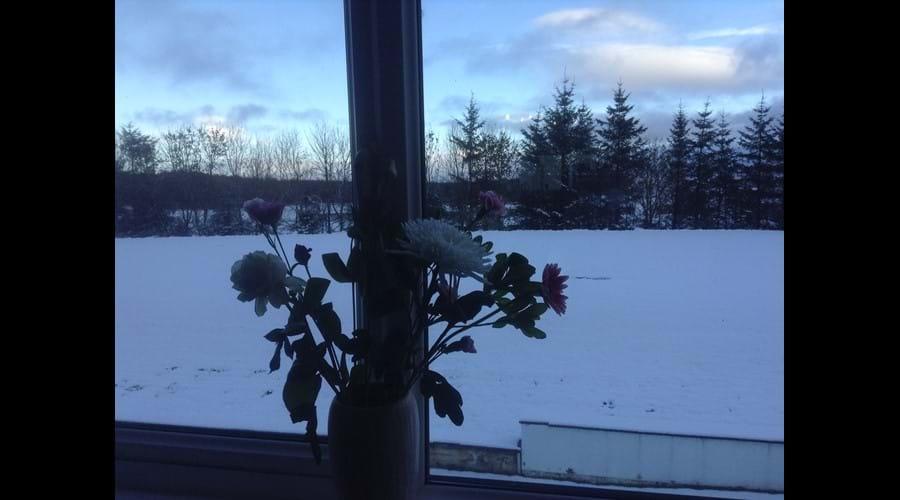View from Mallard Cottage