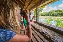 Wildlife watching at Cors Caron