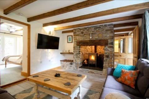 Living room with large settees, TV and log burner