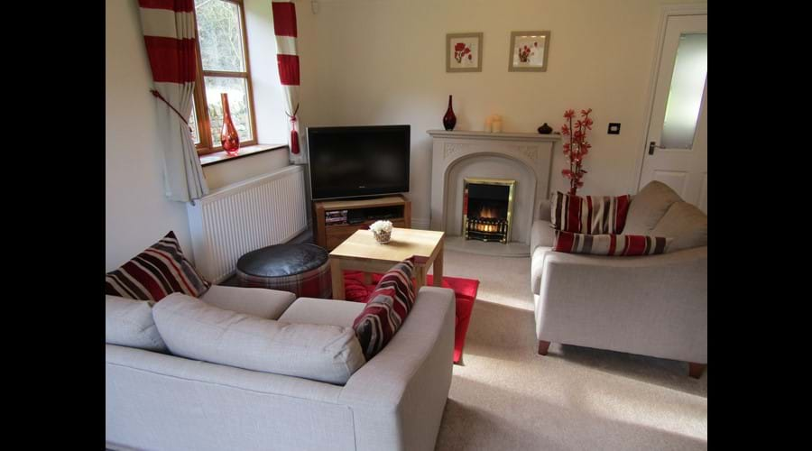 The lounge with cosy Electric fire