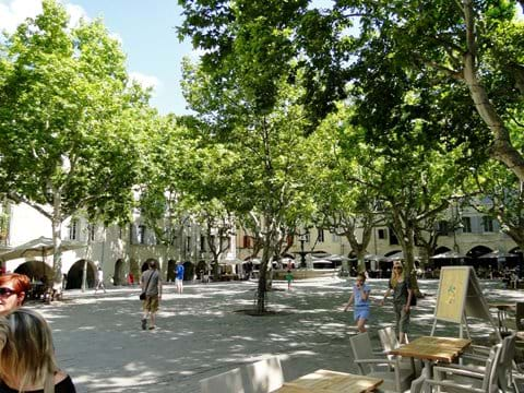 Gîte South of France walking wildlife holiday