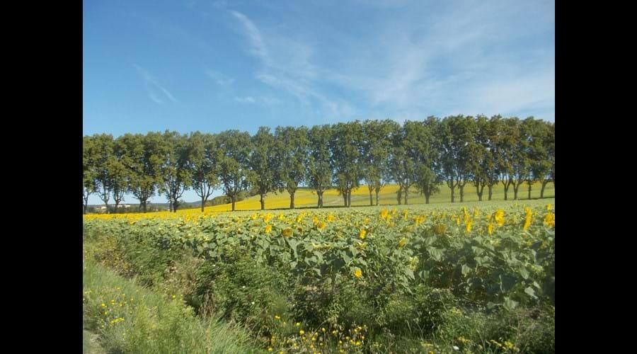 Near Limoux