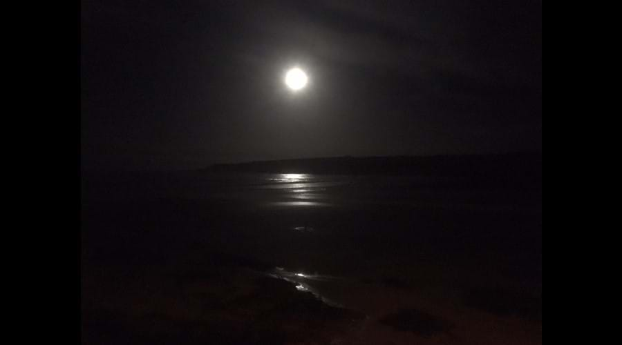 Moonlight over the bay from the cottage