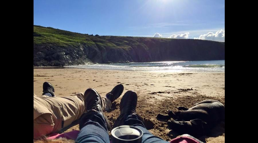 It's a tough life, Mwnt national trust beach
