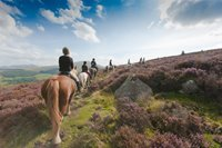 Horse Riding - Snowdonia Riding Stables