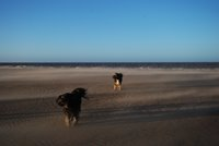 A windy walk on Brancaster Beach