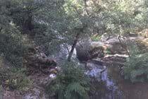 River Alzeau, Montolieu