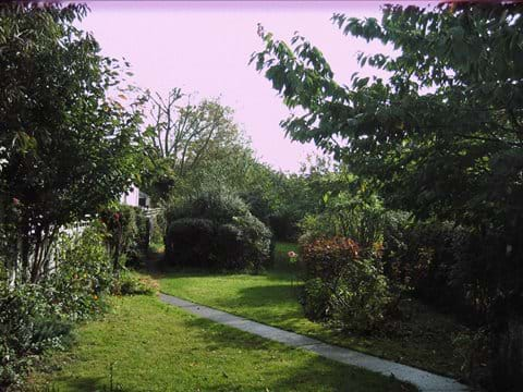 Enclosed Mersea garden