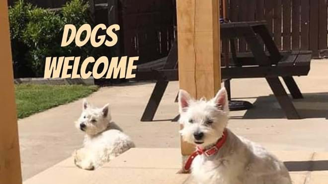 Dog friendly holiday cottage @ Moo Cow Cottage self catering