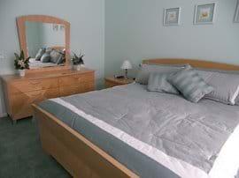 Master with Alternative bedding