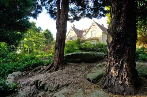 long distance shot of stone house between two mature trees
