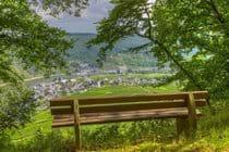 Overlooking The Ellenz Vineyard