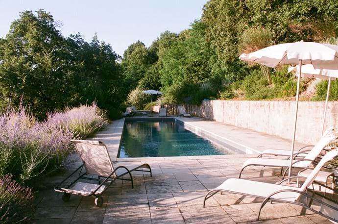 The pool looking towards the hazel grove