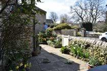 Corner House - Front Patio Garden