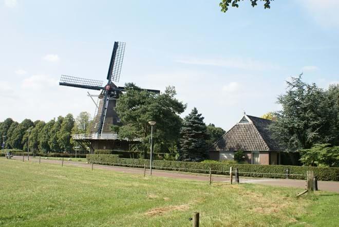 Windmill, Diever