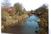 River Aln from footbridge