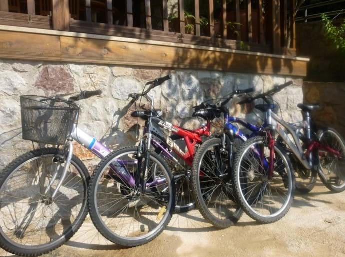 5 bicycles for your use around the village