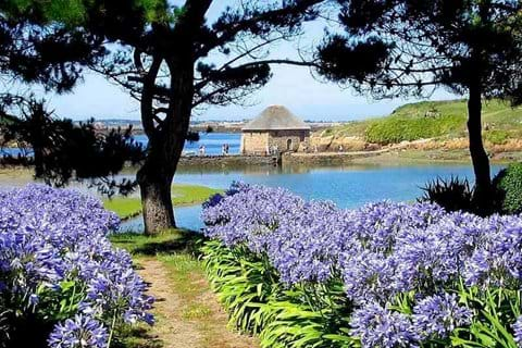 Ile de Brehat - Island of the flowers