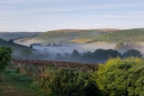 Misty valley from the garden