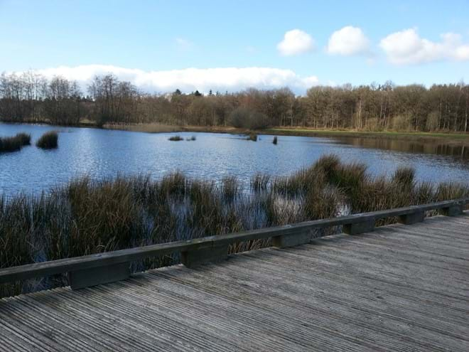 The nearby Dwingelderveld national park - the largest area of moorland in Continental Europe...