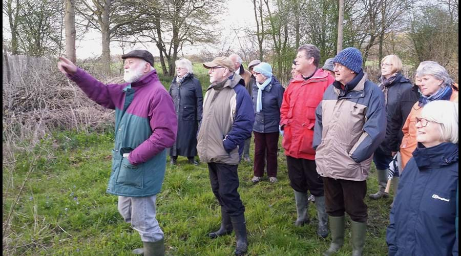 Visit to West Wood Nature Reserve near Thaxted
