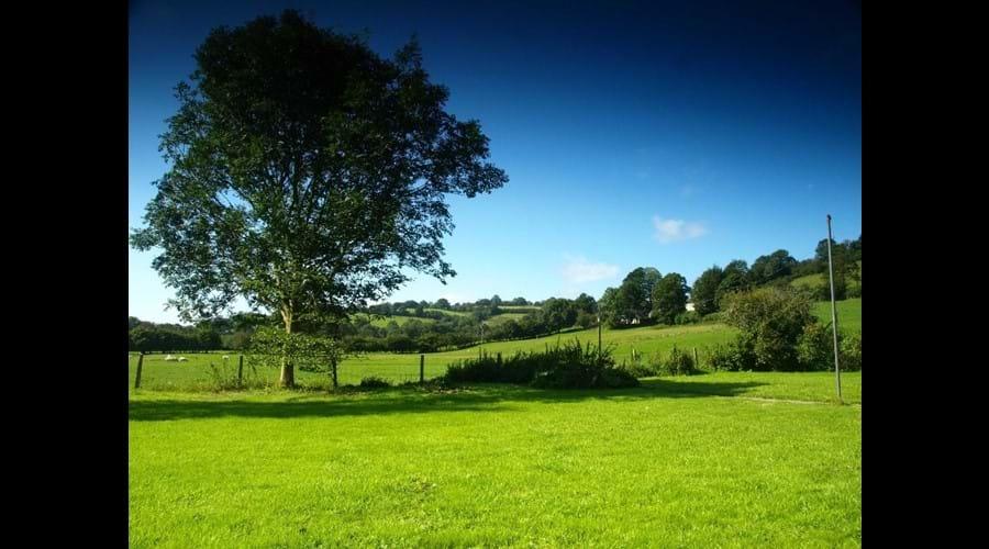 Murmur Aeron Garden and fields beyond