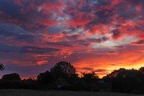 Sunrise viewed from Cottage garden