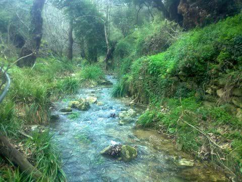 Refreshing Mili Gorge