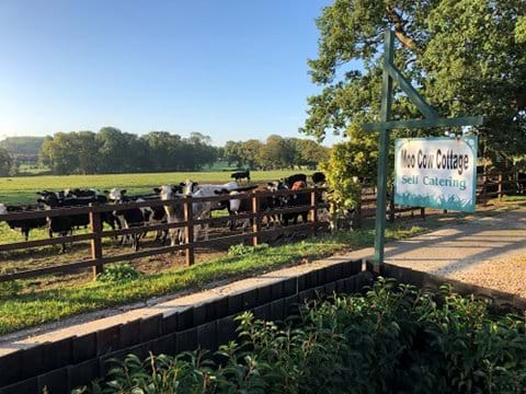 Rutland Accommodation - Farm stay at Moo Cow Cottage