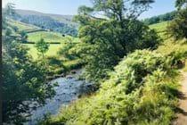 riverside-walk-along-the-dales-way