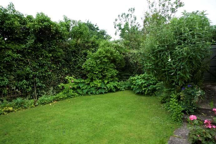 June greenery