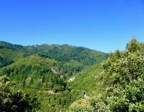 Vue de pays de randonnée au dessus du gîte (vers le Col de l