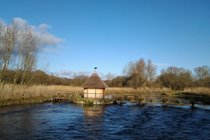 The River Test at Leckford