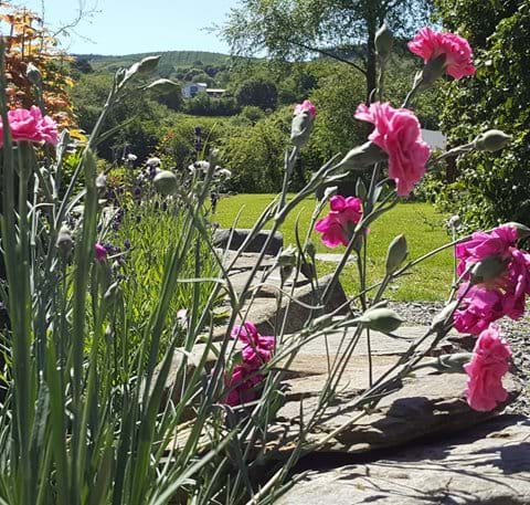 Garden overlooks the hills and valley