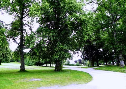 Grant Park provides a pleasant place for a stroll - with or without a canine companion