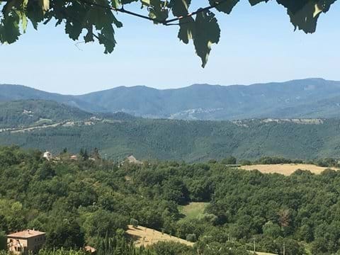 Part of the panorama from the terrace