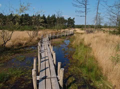 Dwingerderveld National Park