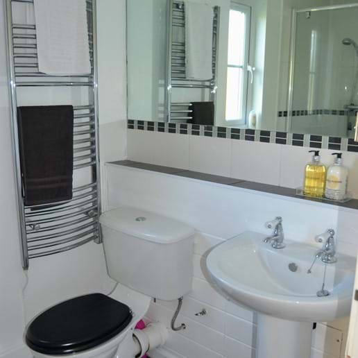 Downstairs shower room