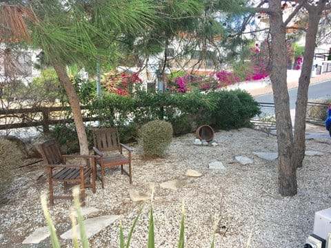 Relax in the shade of the pine trees in the garden