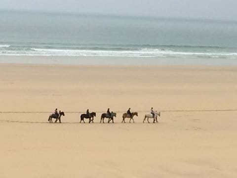 Horse ridding at Gwithian